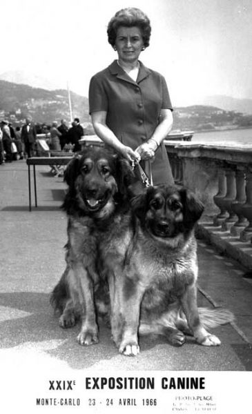 Piera Bonazzola, 1966