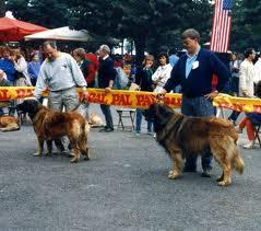 L'Esposizione Internazionale di Bellagio 1987
